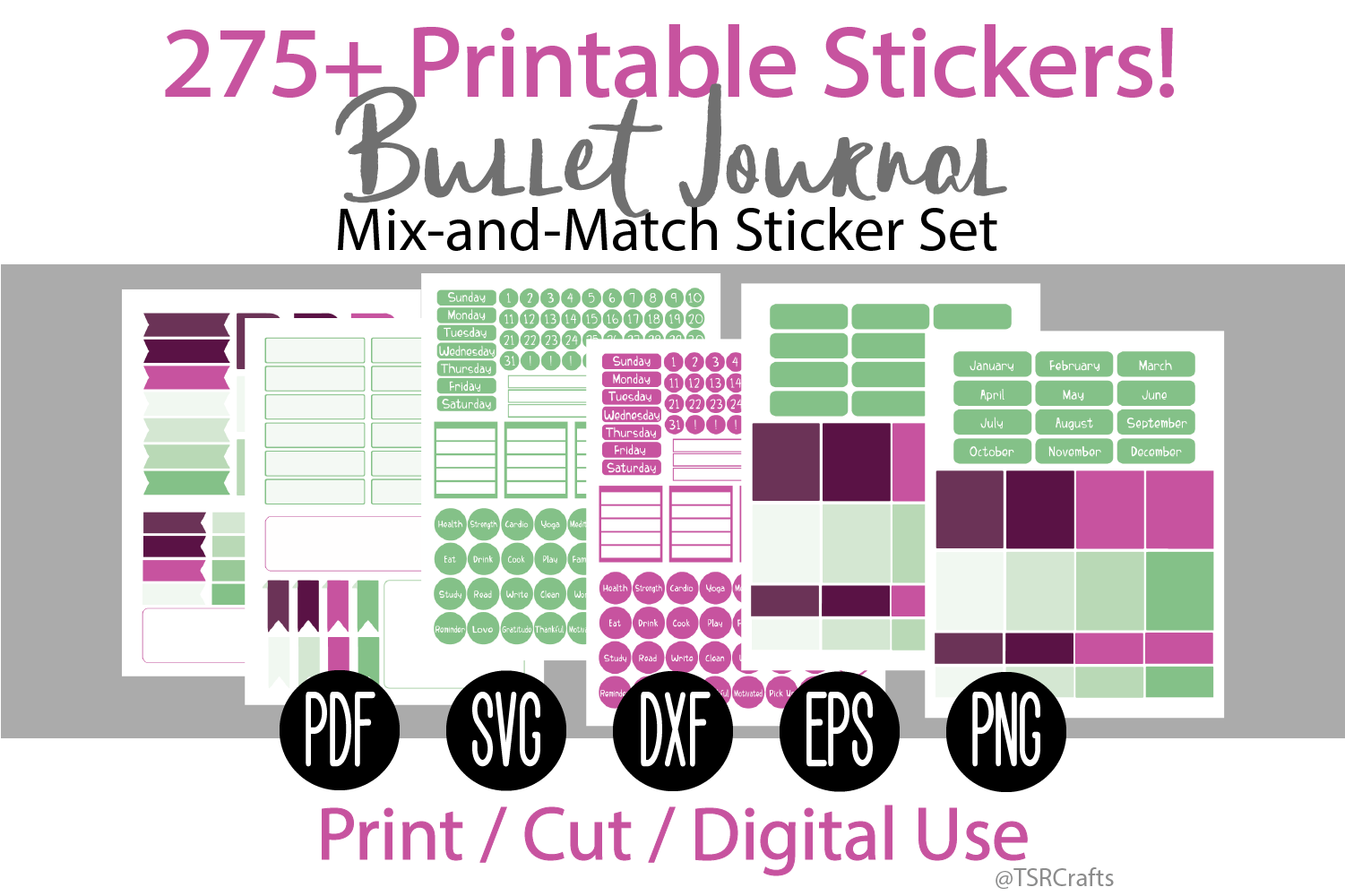 Bullet Journal and Planner Sticker Set - Raspberry and Mint example image 1