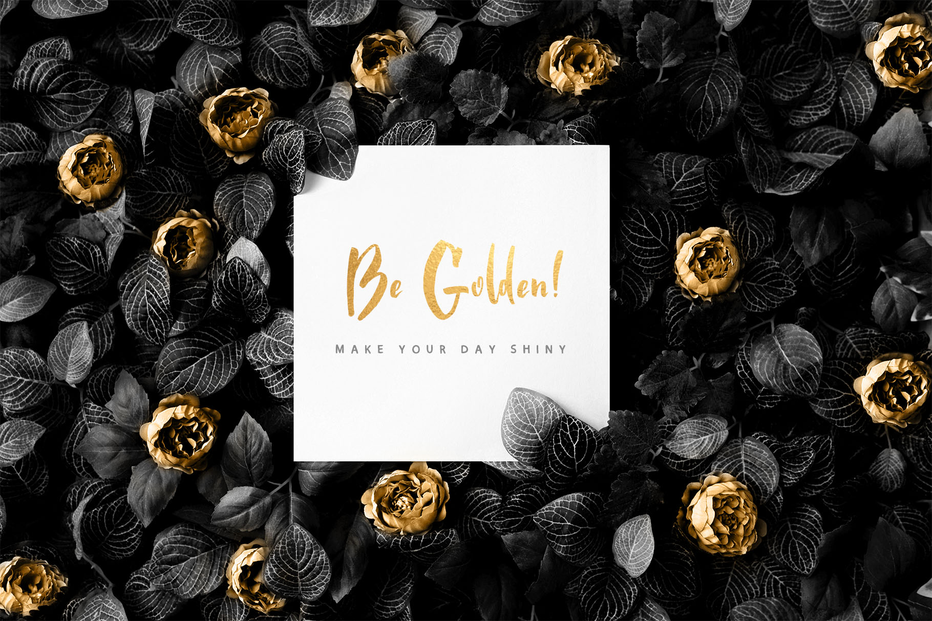 Golden Night script font example image 9