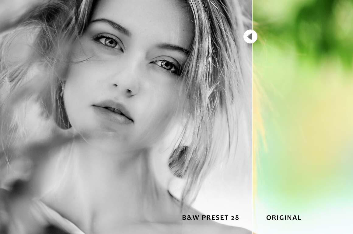Black & White Collection Lightroom Presets example image 7