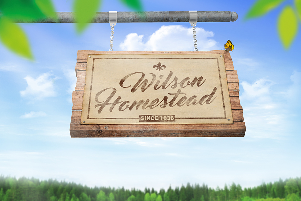 Hanging Wooden Sign Mockup example image 5