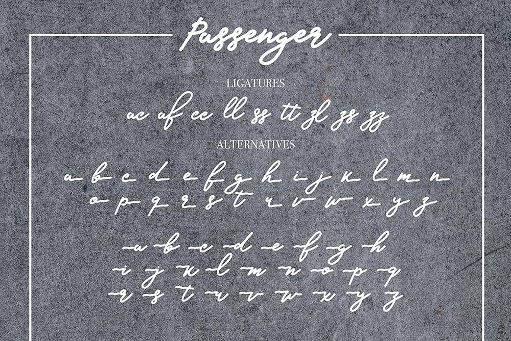 Passanger example image 8