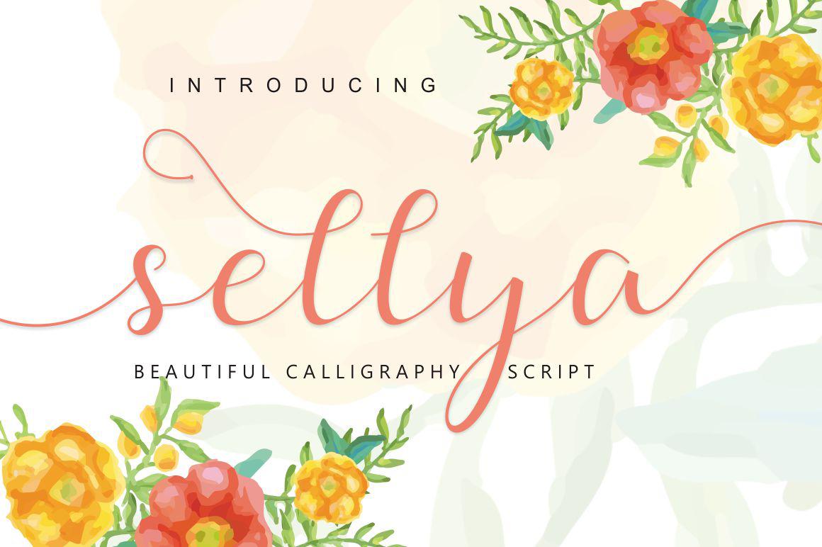 sellya script example image 1