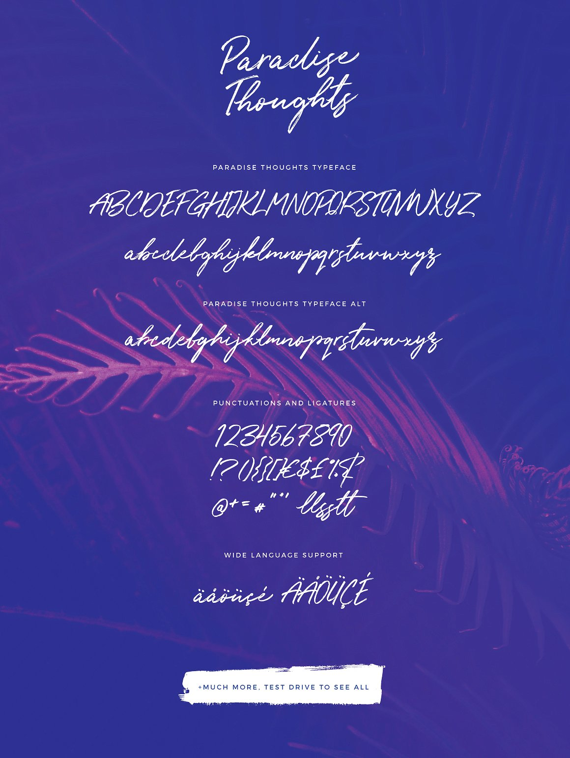 Paradise Thoughts Typeface example image 9