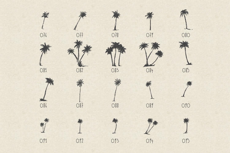 227 hand drawn palms + BONUS example image 8