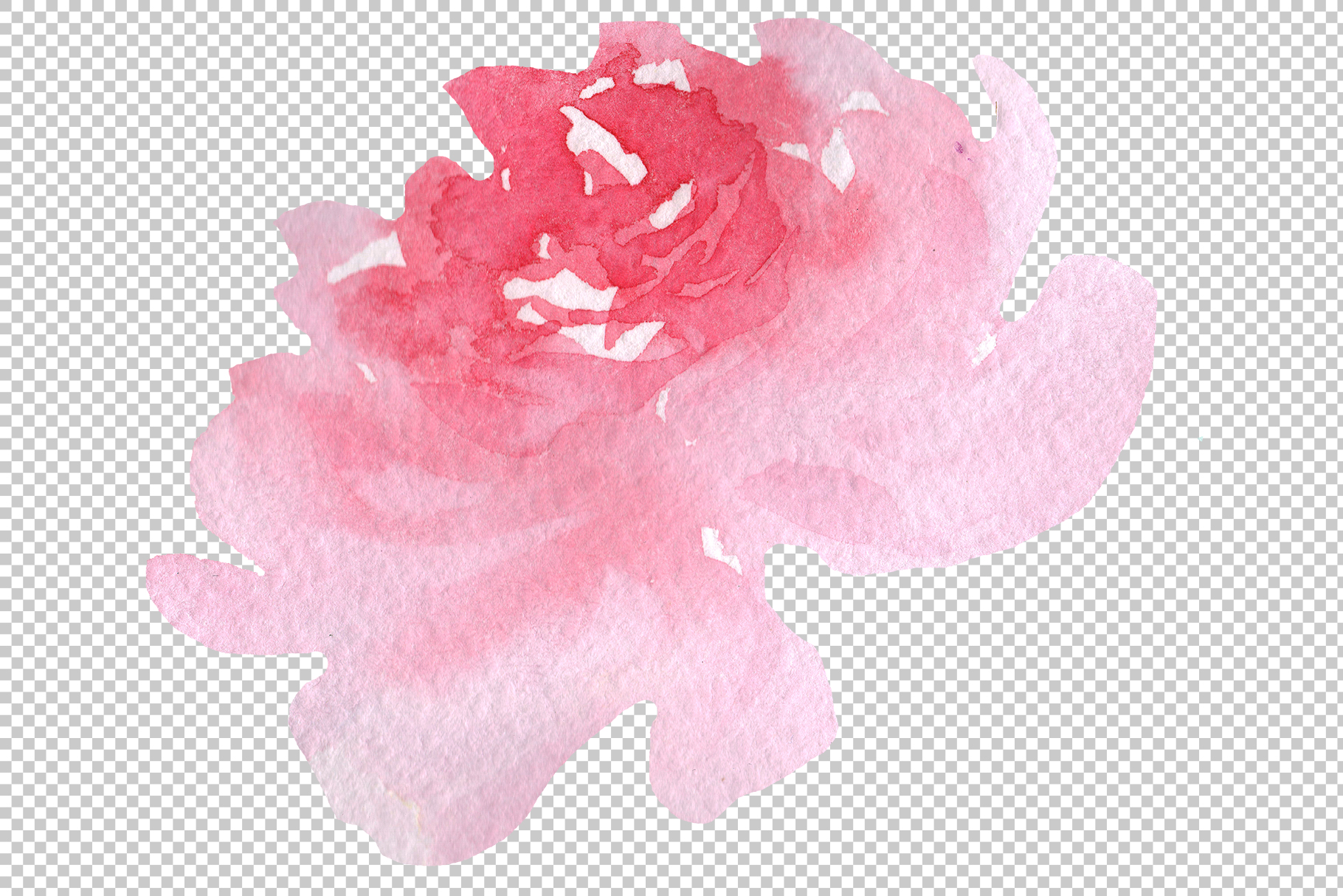 Delicate colorful peony PNG watercolor set example image 4