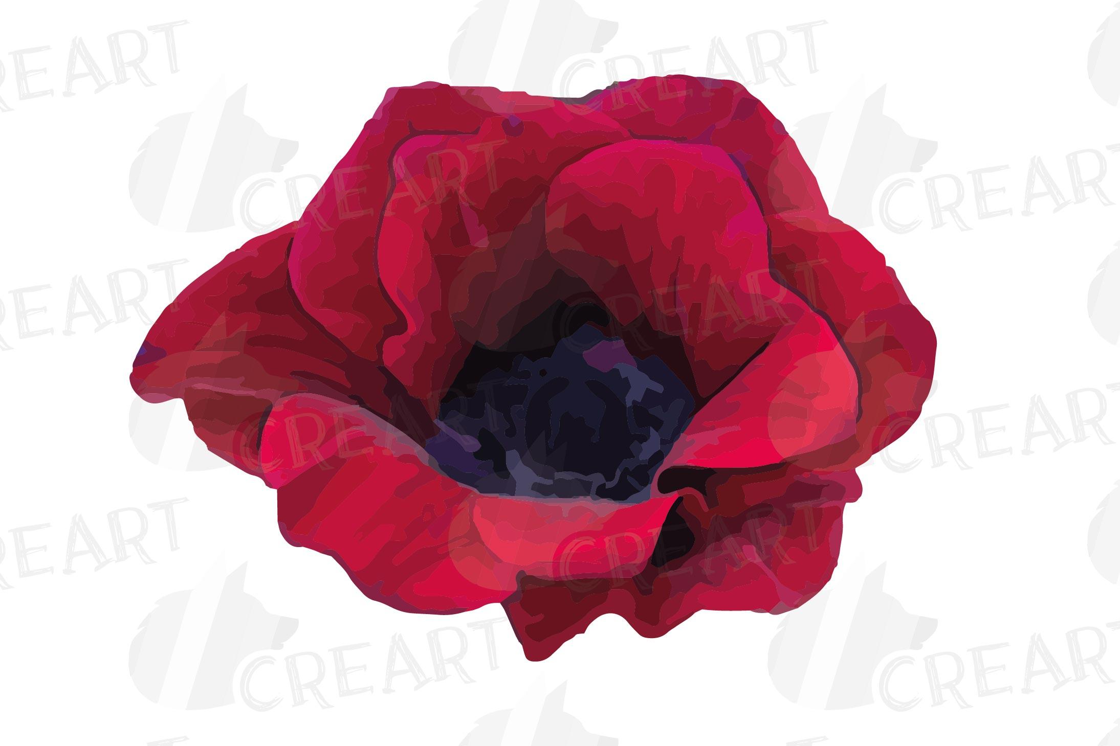 Anemone watercolor clip art pack, watercolor anemone design example image 3