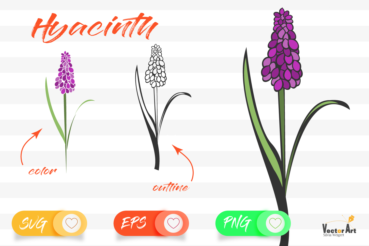 Hyacinth - Cut File with 2 Layers example image 1