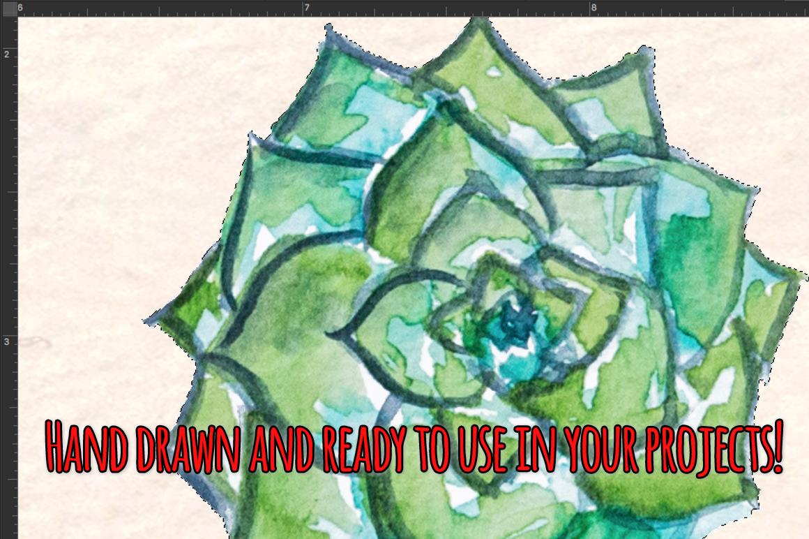 24 Cactus and Succulent Indoor Garden Watercolors example image 3