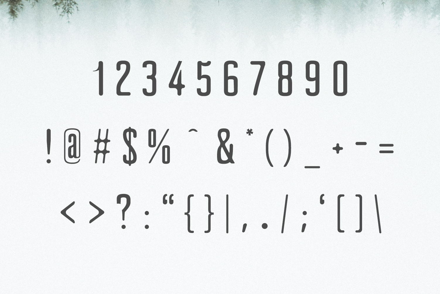 Clarra Sans Serif Font Family example image 3