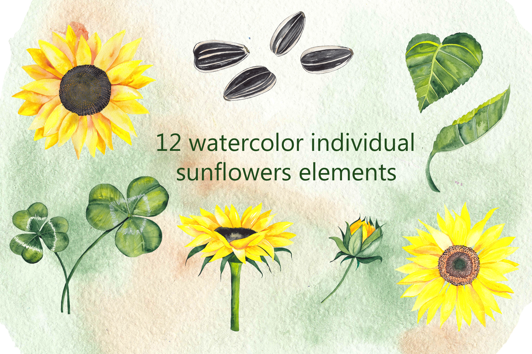 Watercolor summer flowers example image 5