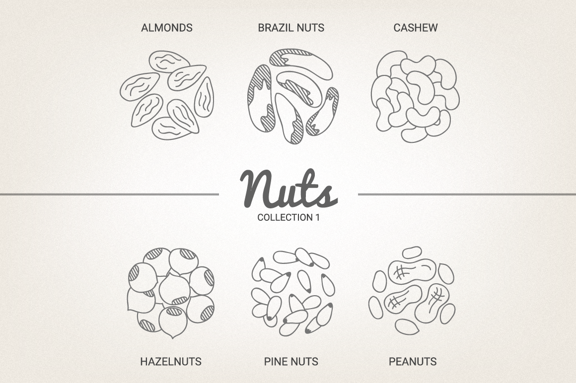 12 Nuts - Illustration & Patterns example image 5