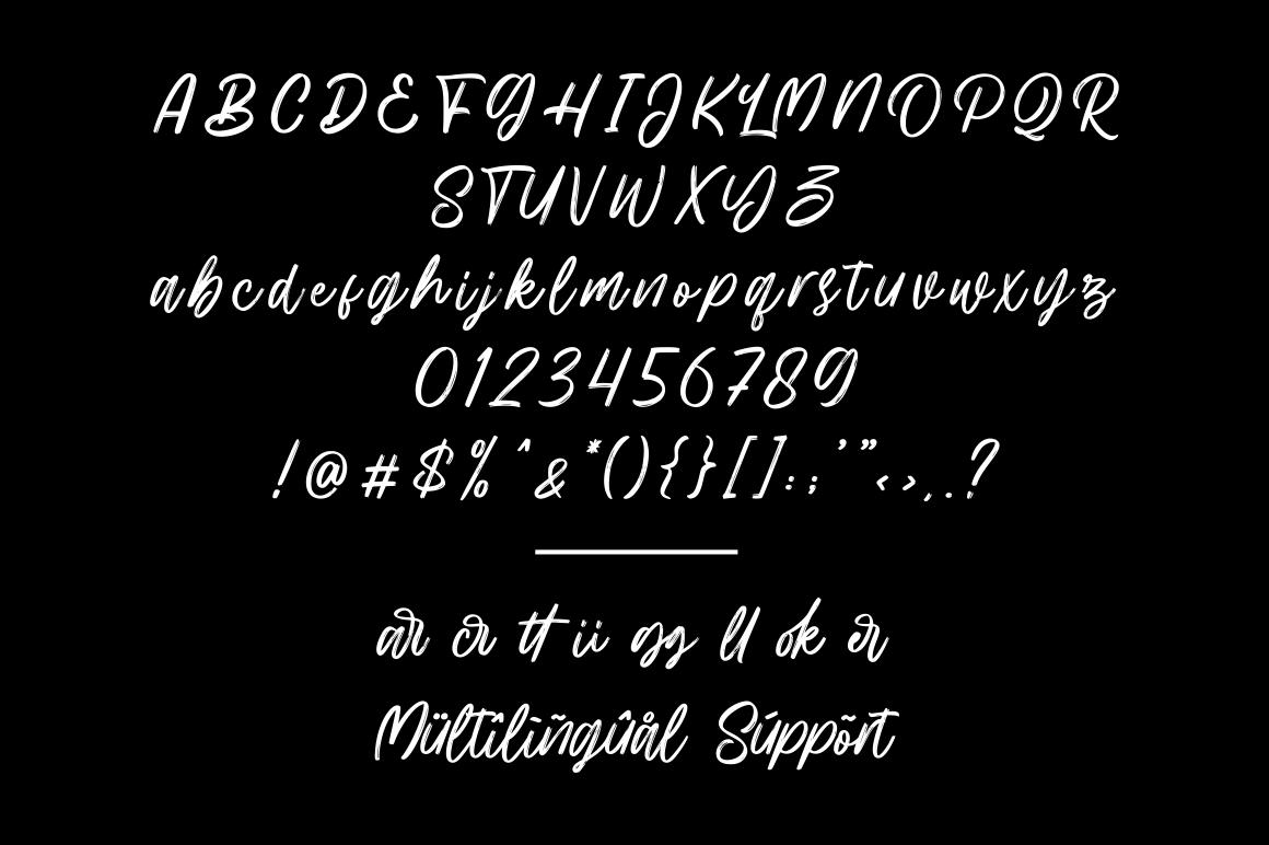 Hillbear - Handbrush Script Font example image 7