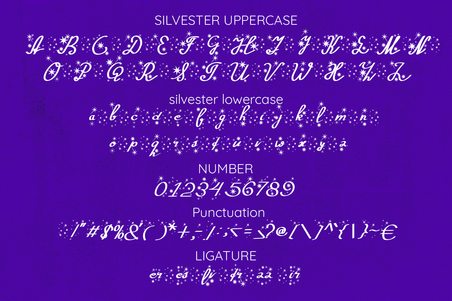 Silvester Fun Holiday Script example image 7