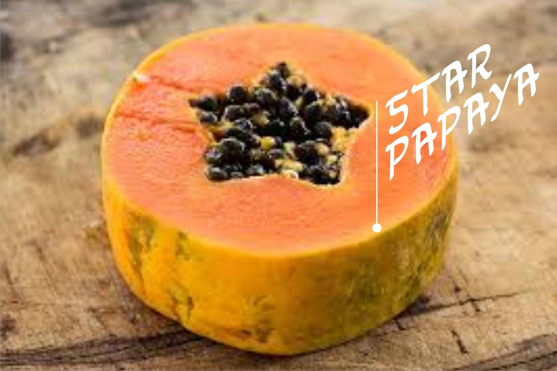 papayafont example image 3