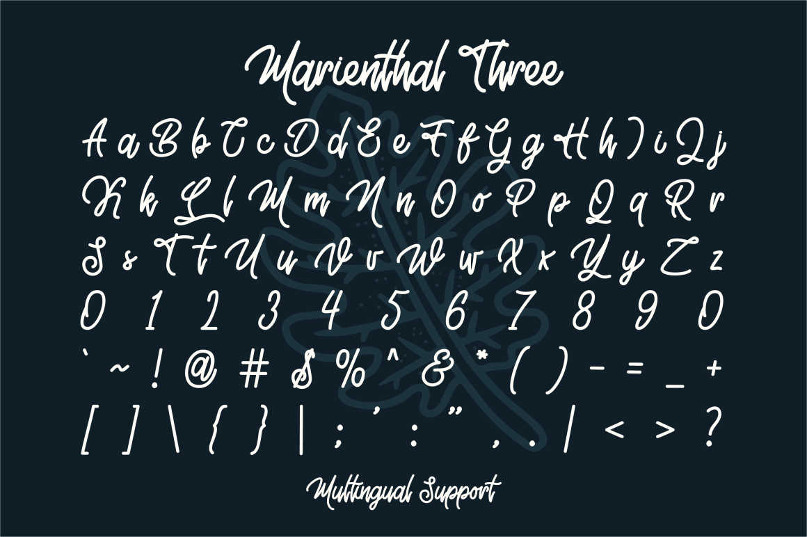 Marienthal Font Bundle Extras! example image 6