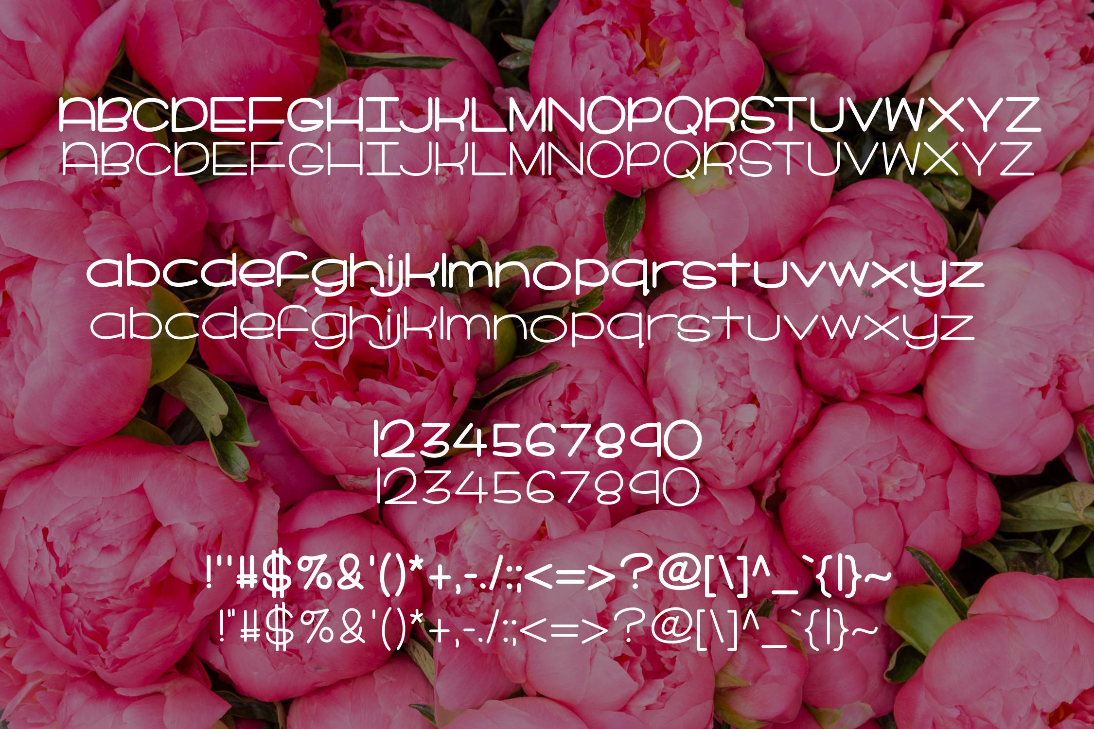 Peonies in Bloom example image 2