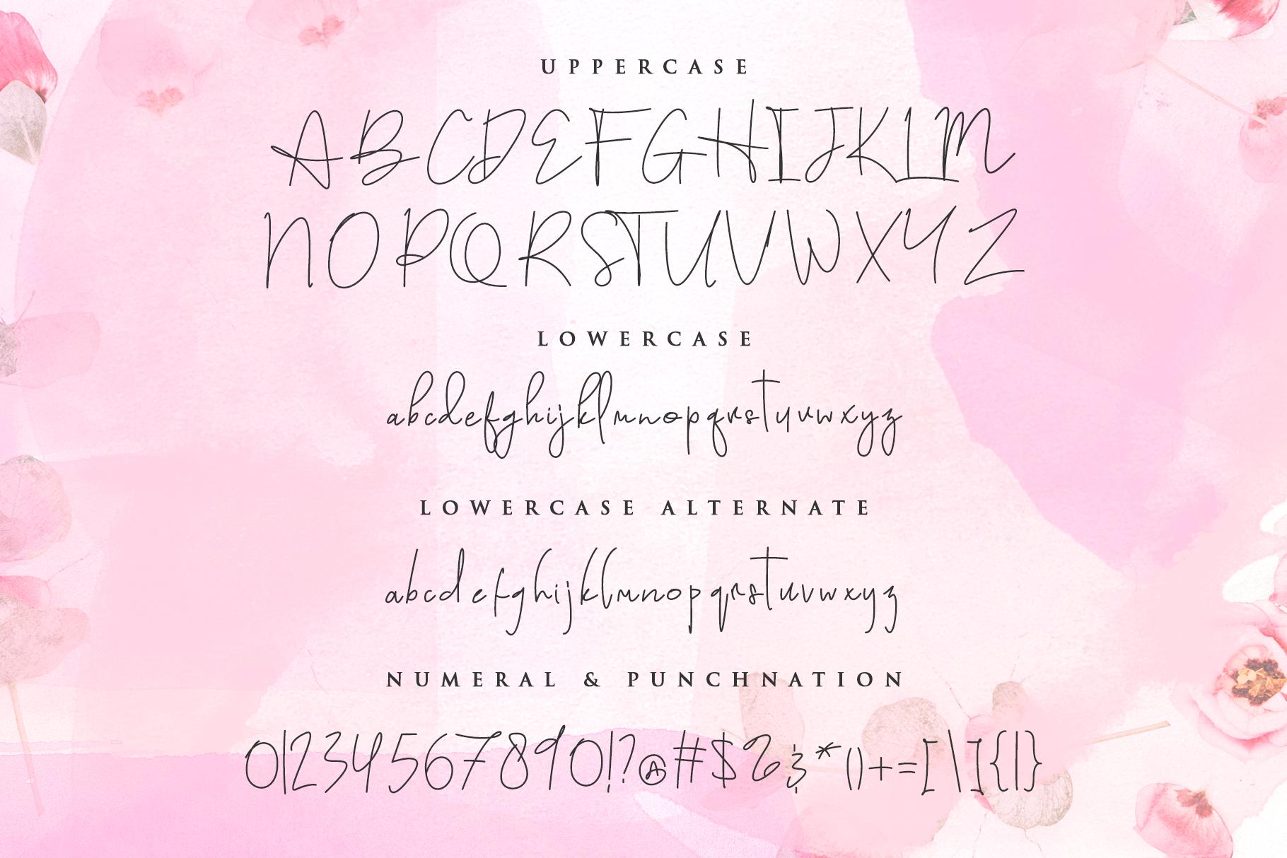 Austin Pen - Signature Monoline example image 12