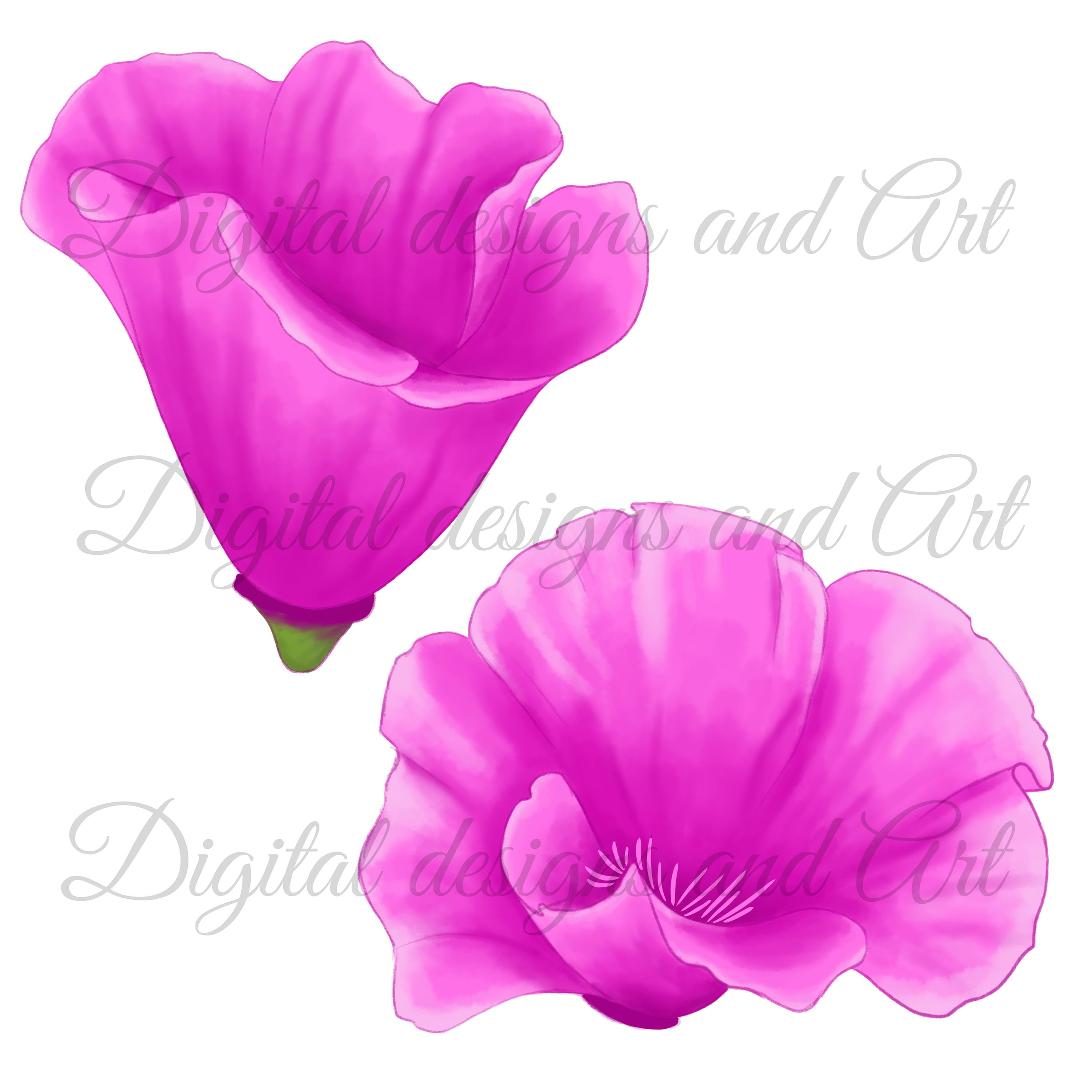 Poppy clipart example image 5
