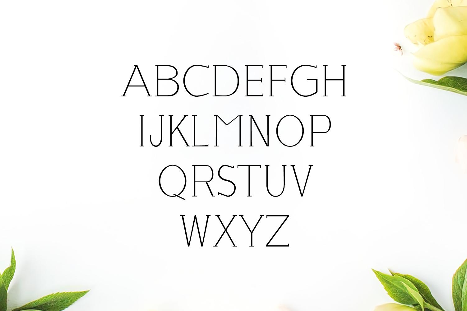 Lisandro Slab Serif Font example image 2