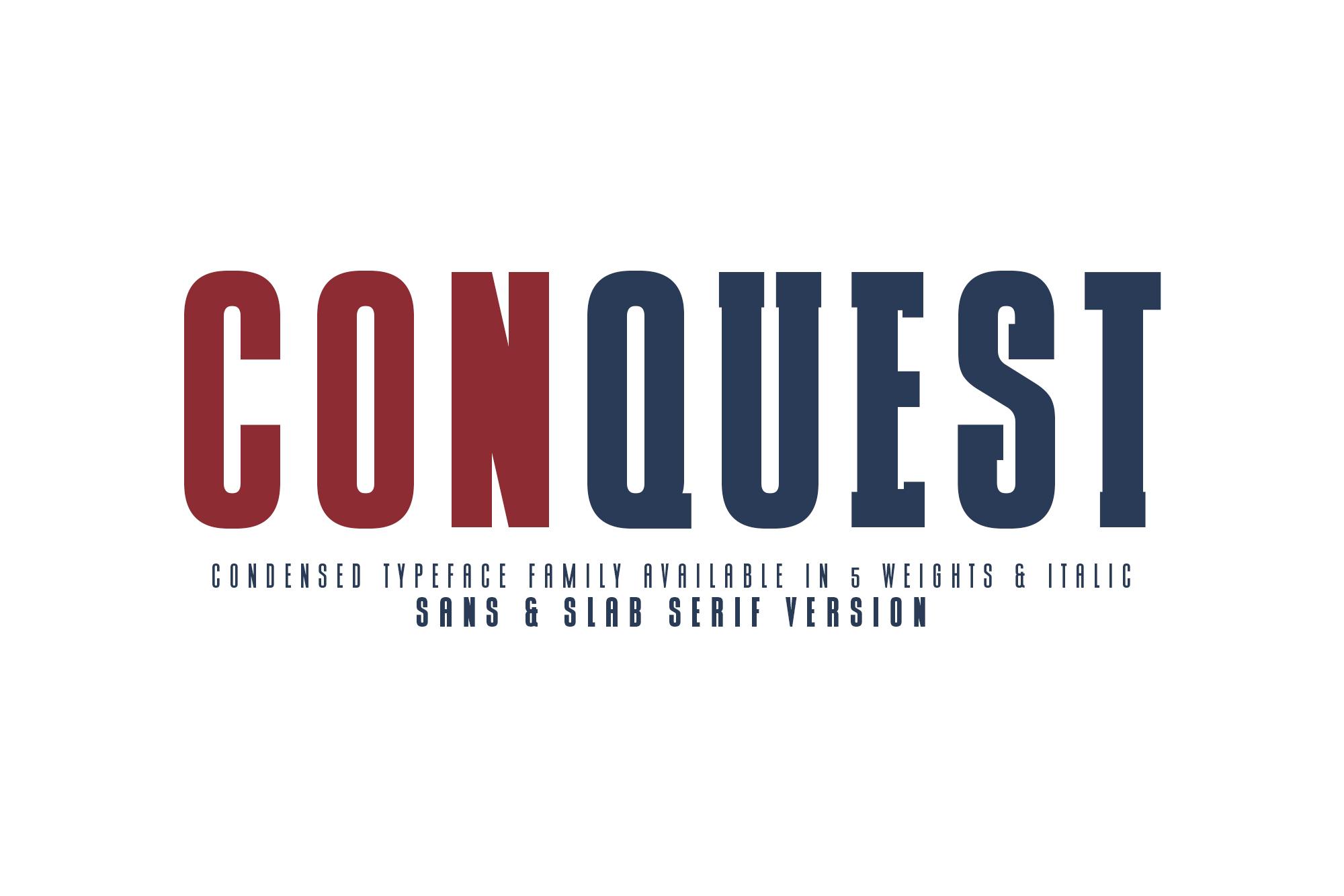 CONQUEST Sans & Slab Serif example image 1