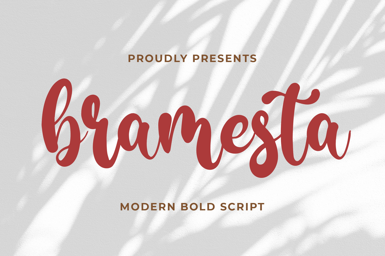 Bramesta - Modern Bold Script example image 1
