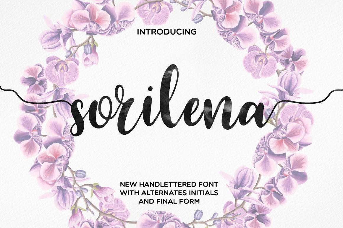 Sorilena Script example image 1