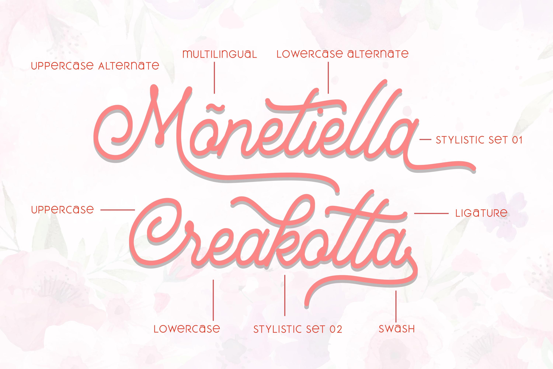 Mountecarlo - Beautiful Monoline example image 3
