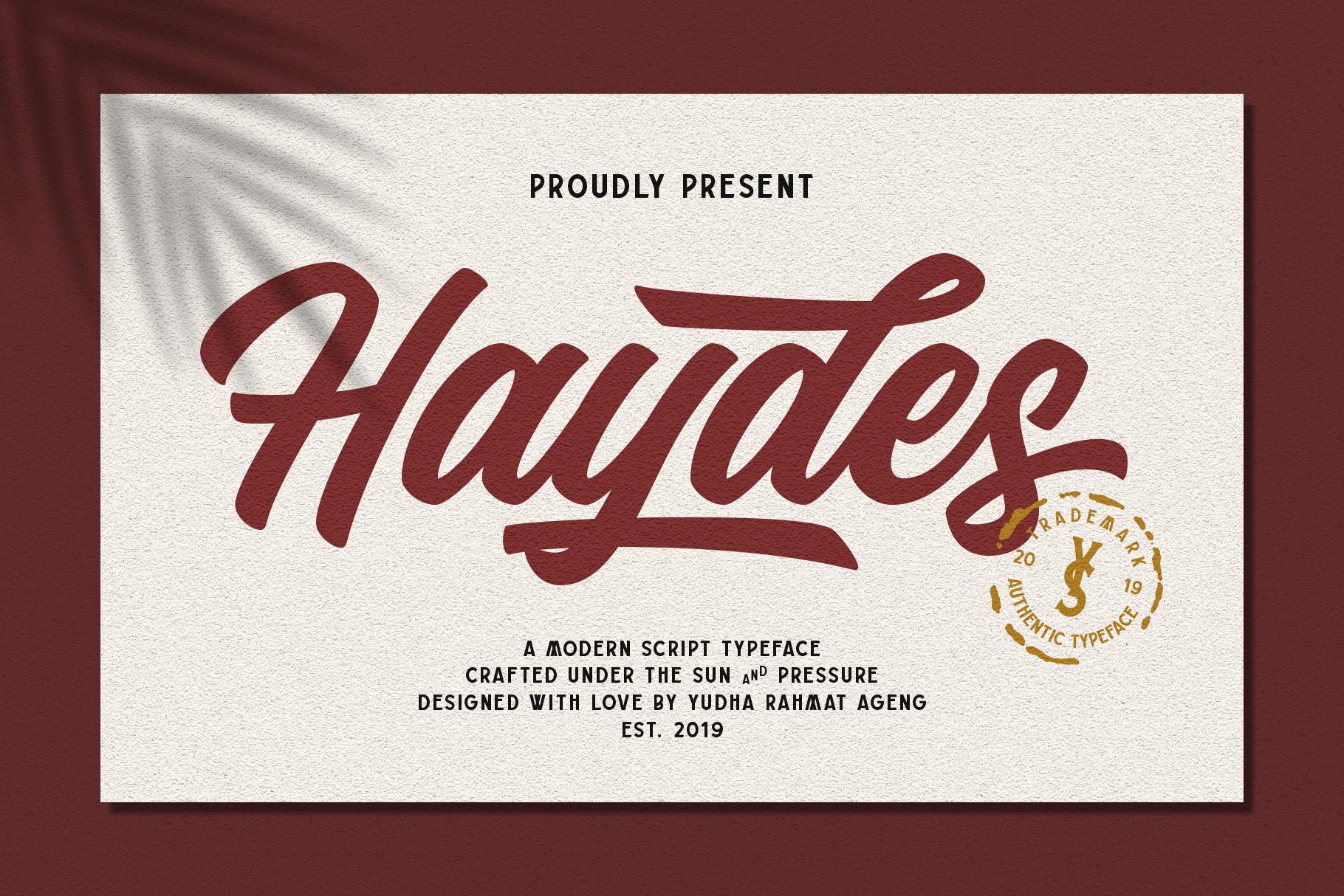 Haydes Script Font example image 2