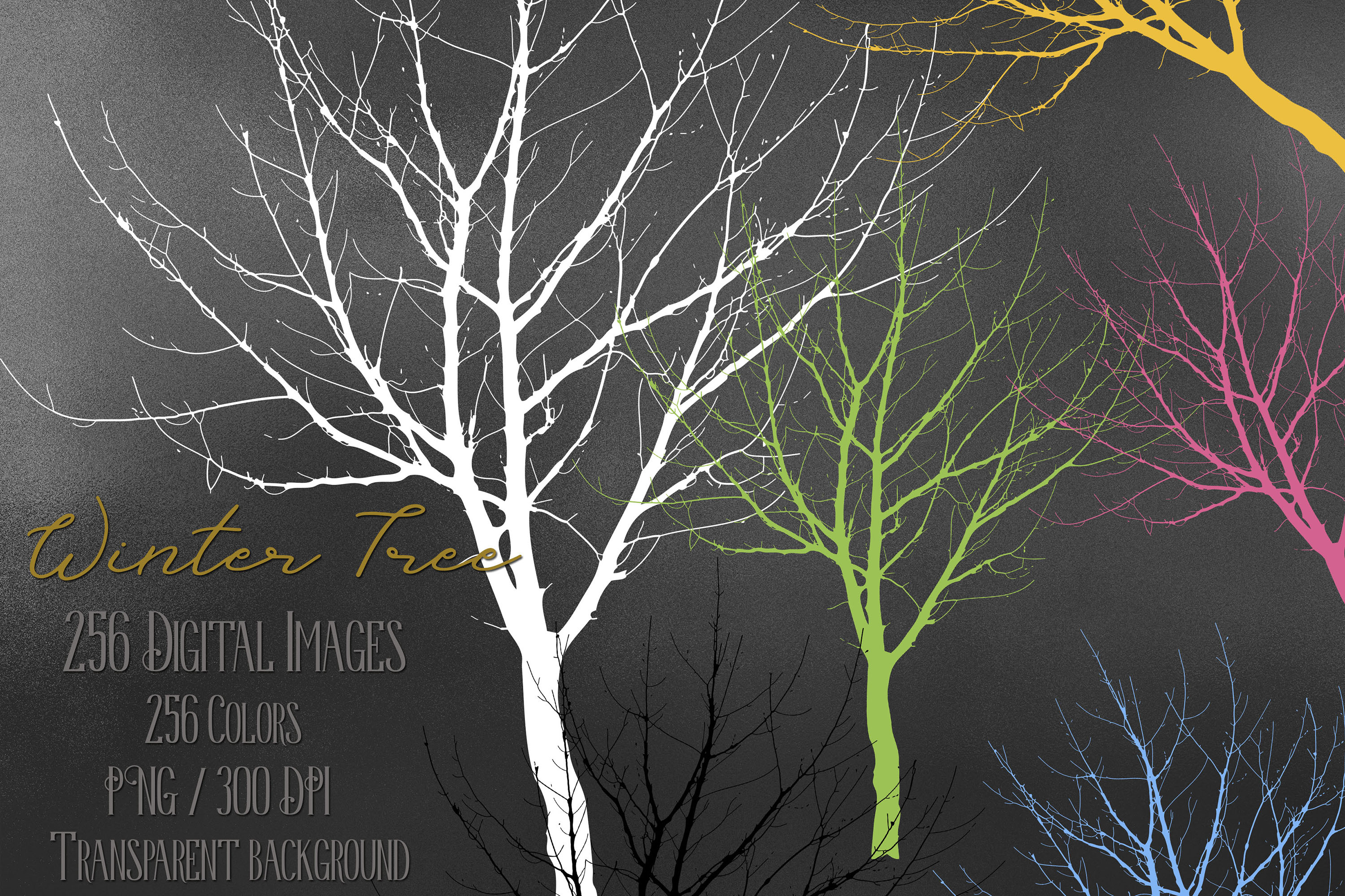 256 Winter Tree Branch Silhouette Wedding PNG Digital Images example image 1