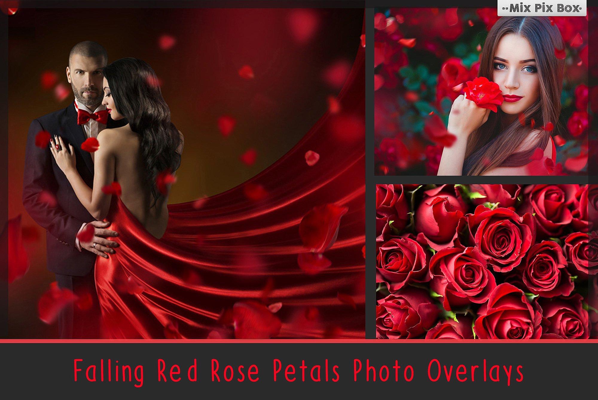 900 Photo Overlays Bundle example image 9