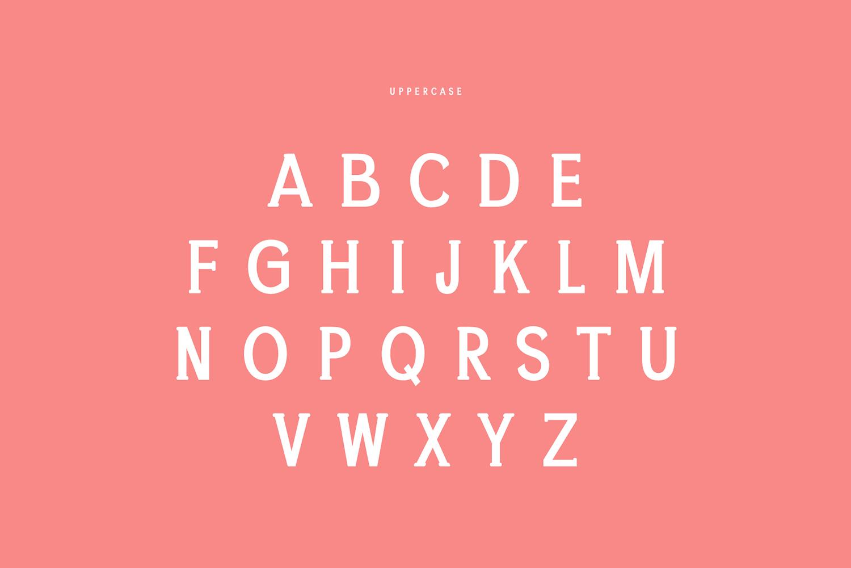 Chelina Slab Serif Font Family example image 2
