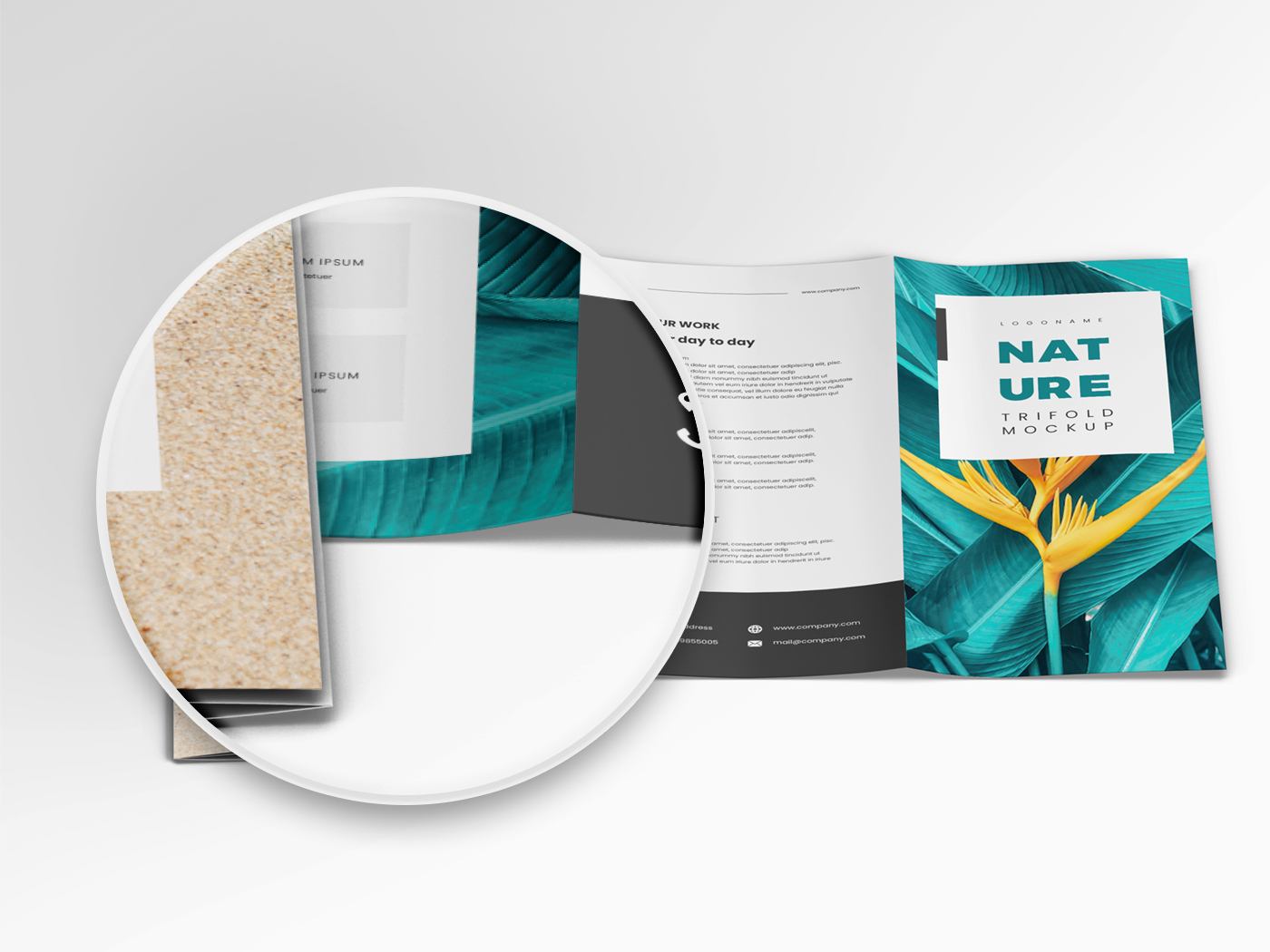 A4 Trifold Mockups V3 example image 9