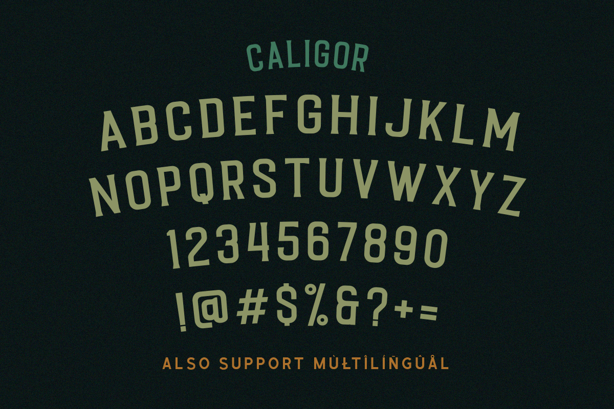 CALIGOR - Display Typeface example image 4
