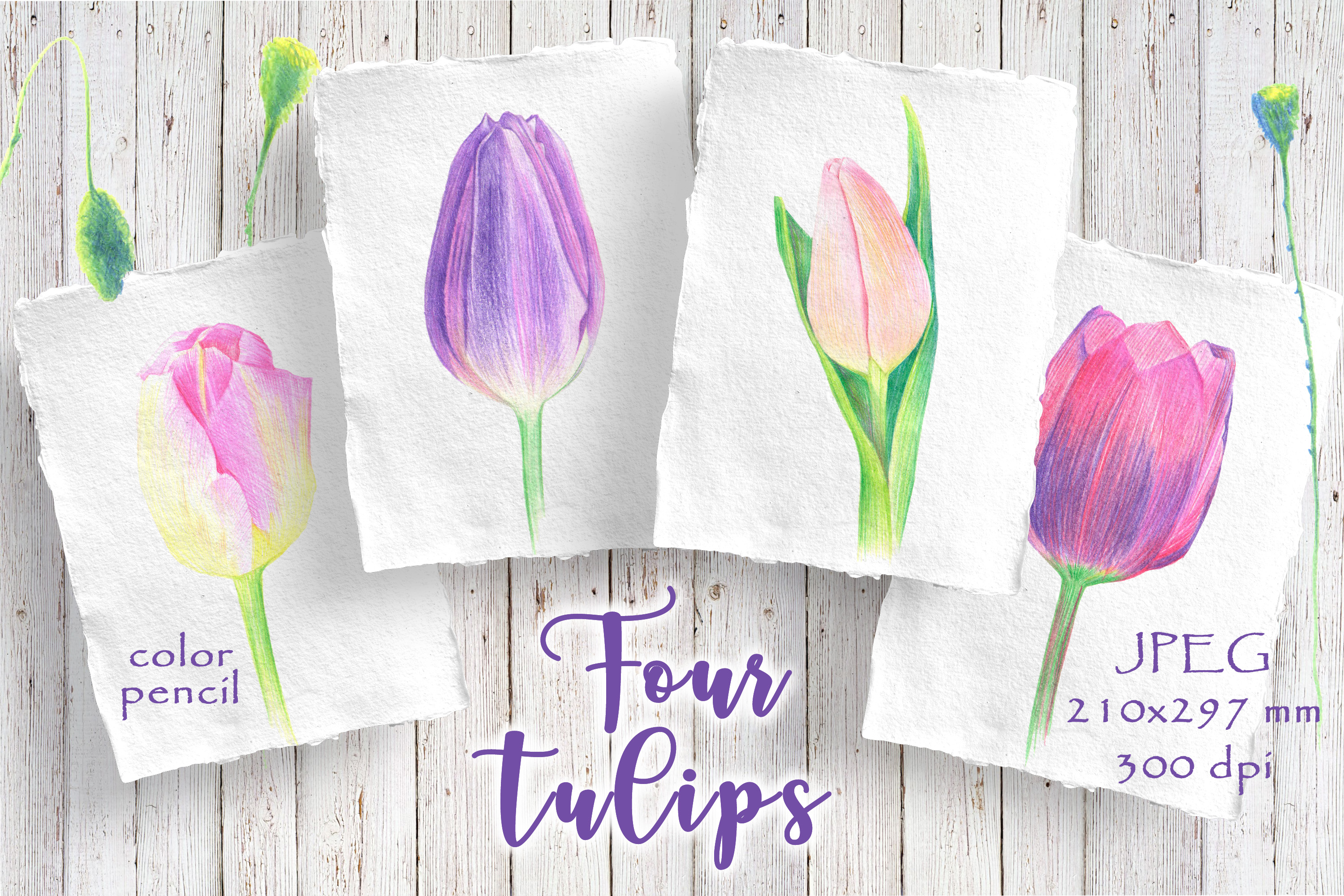 Four tulips example image 1