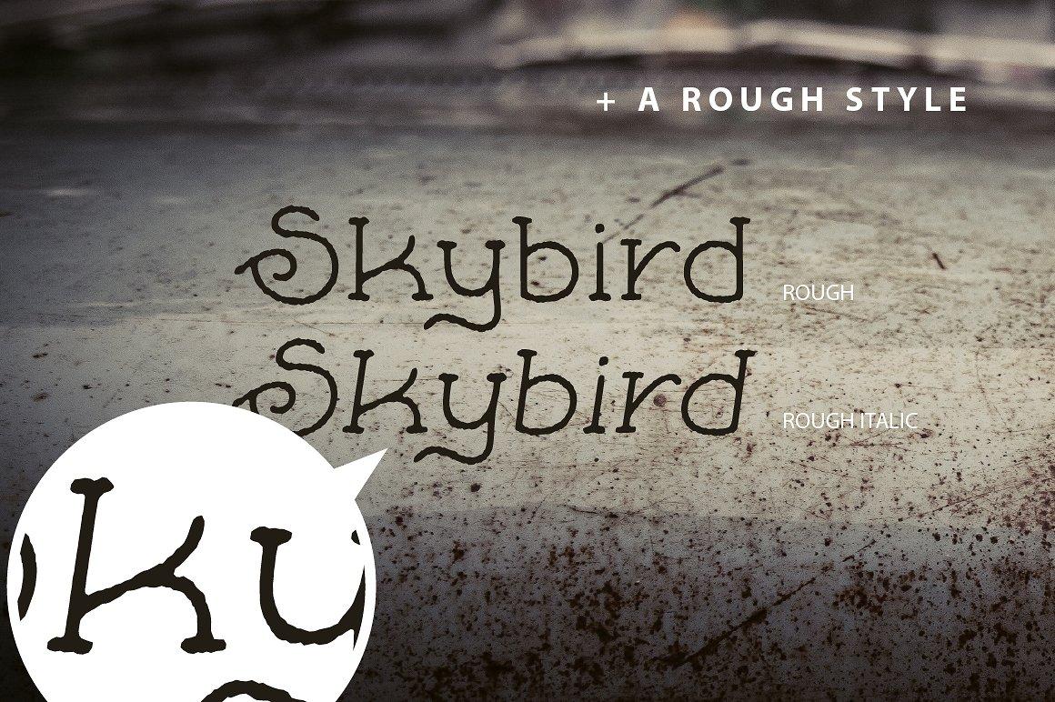 Skybird Family - Crazy, unique & retro example image 7