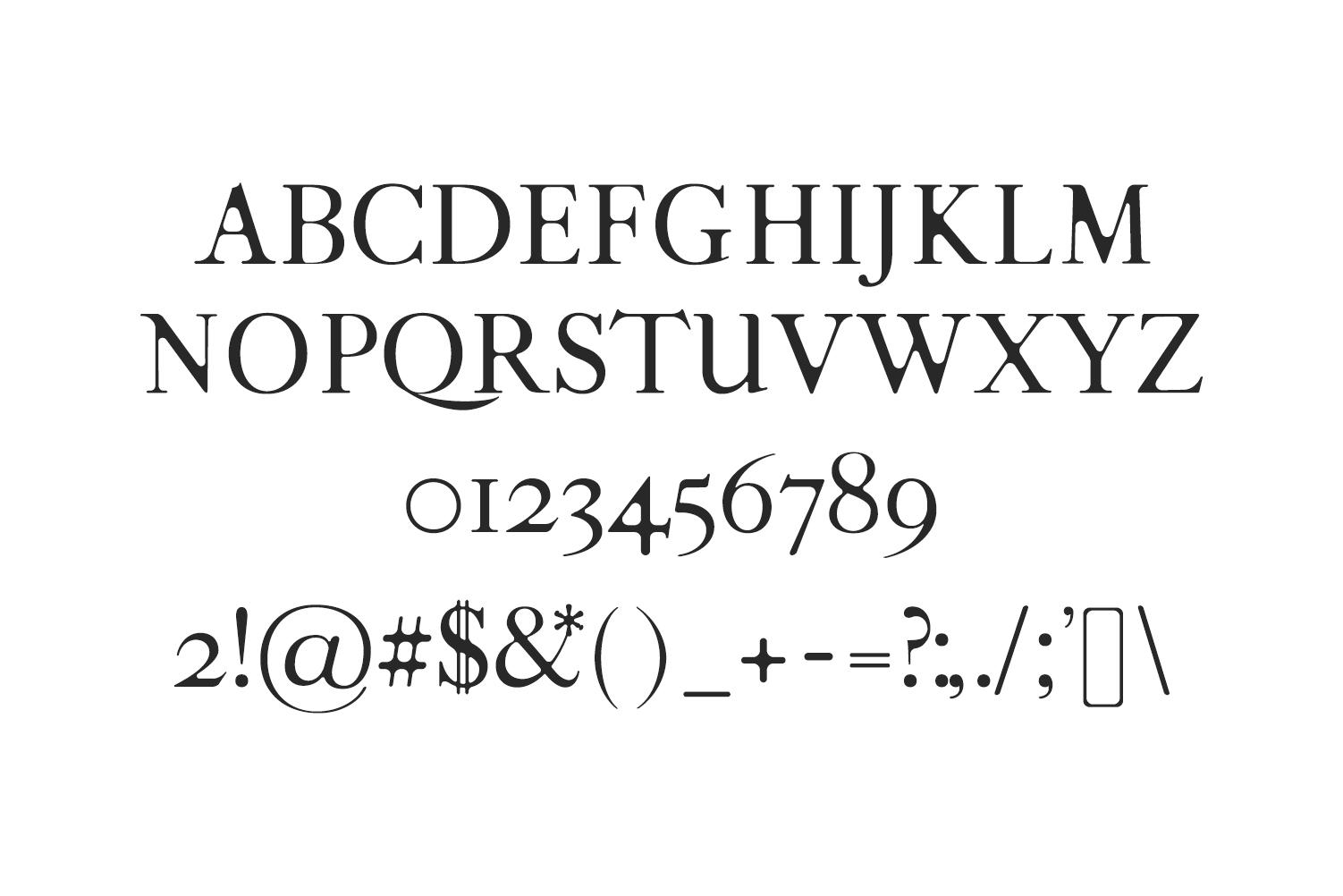 Moisses Serif Font Family Pack example image 3