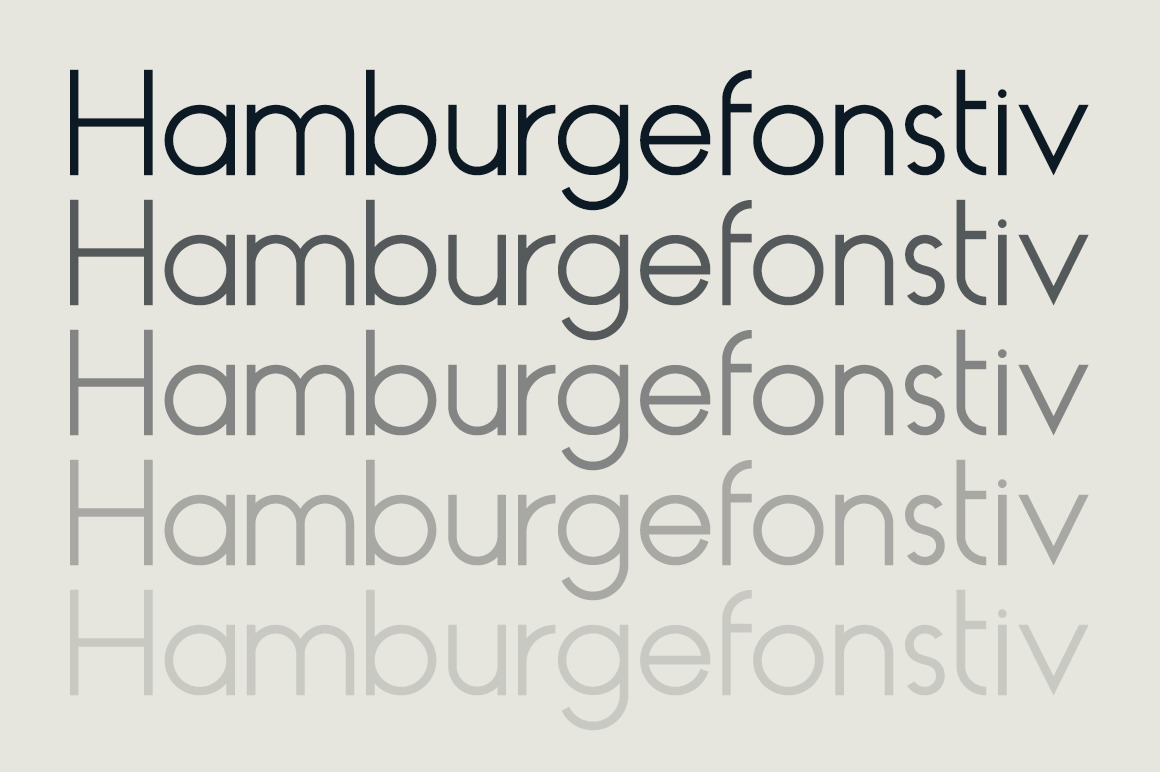 HAUS Sans Regular example image 2