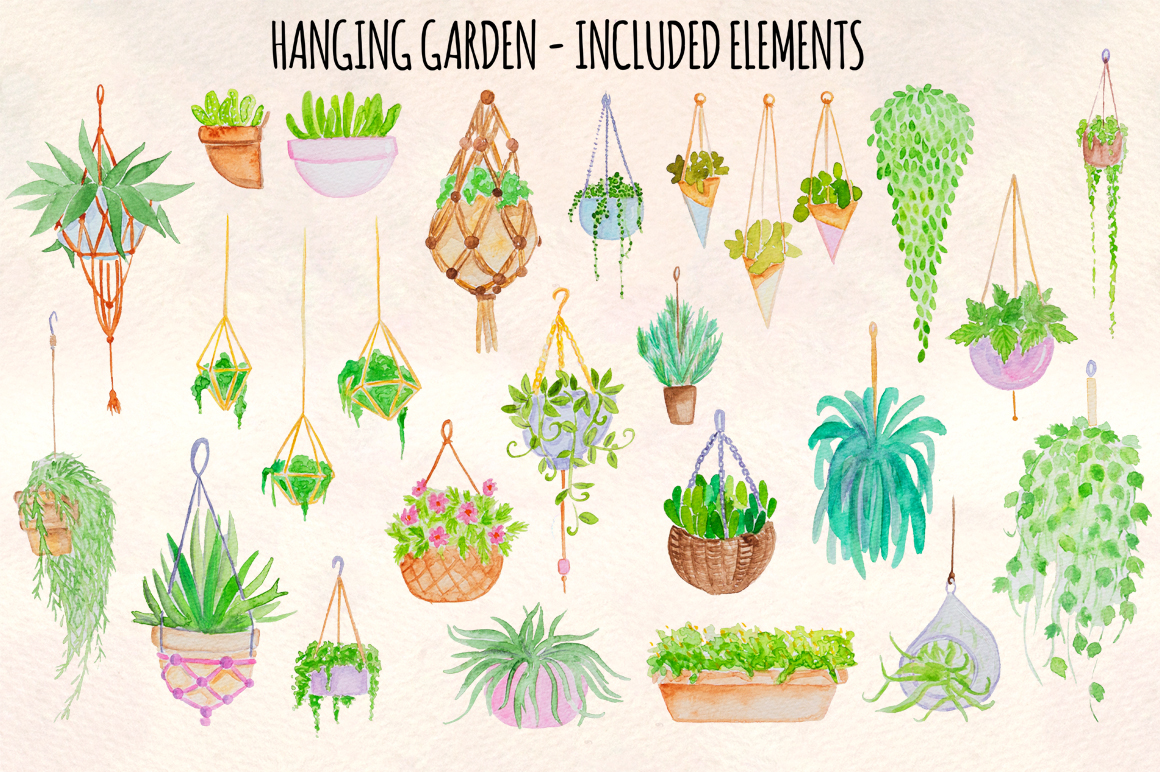 26 Hanging Plants Garden Watercolor Nature Illustrations example image 2
