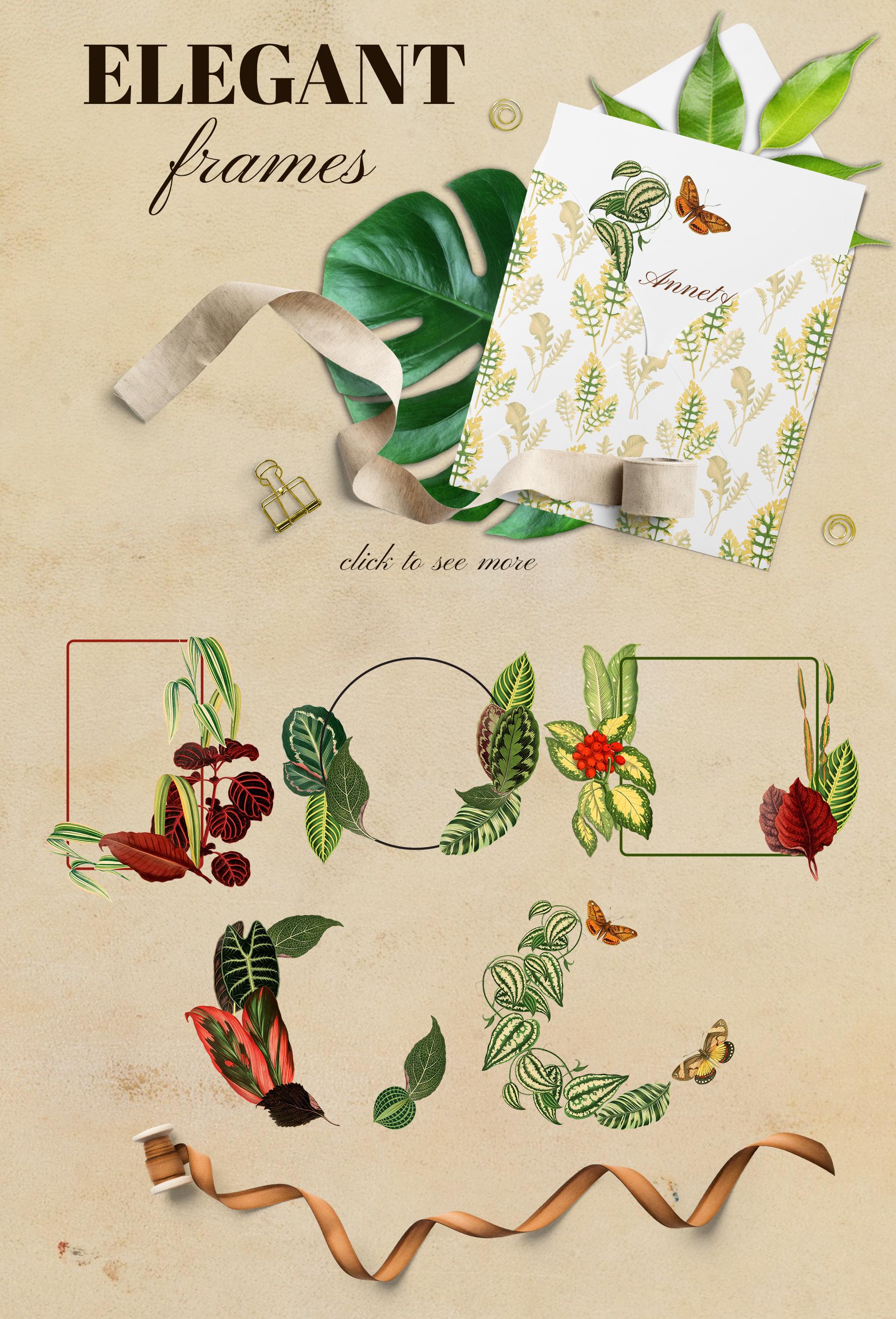 Vintage exotic herbarium design set example image 7