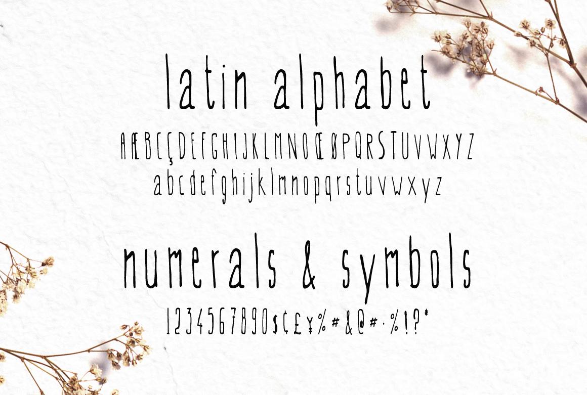 EVEY Handcrafted Multilingual Font | Latin / Greek / Cyrillic example image 3