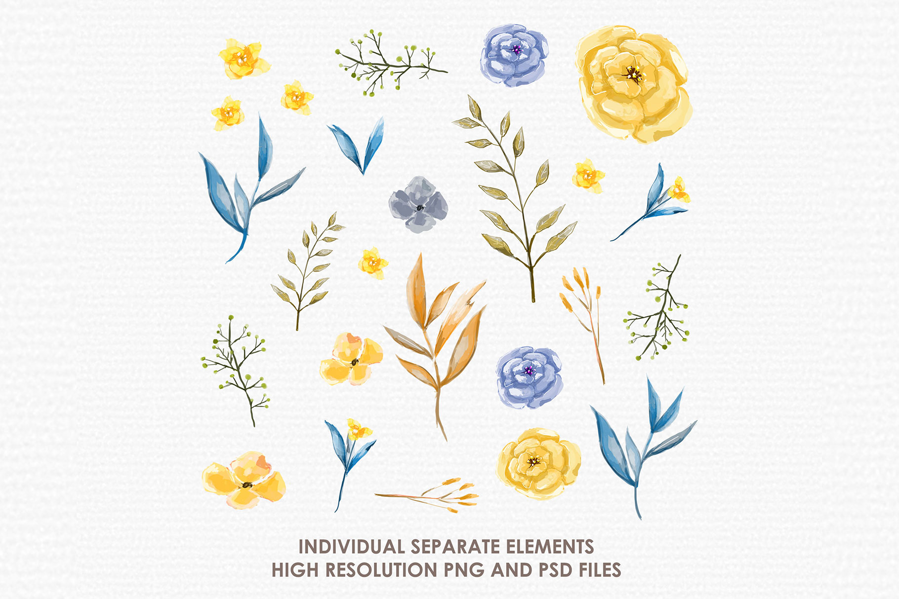 Blue Akasia - Digital Watercolor Floral Flower Style Clipart example image 2