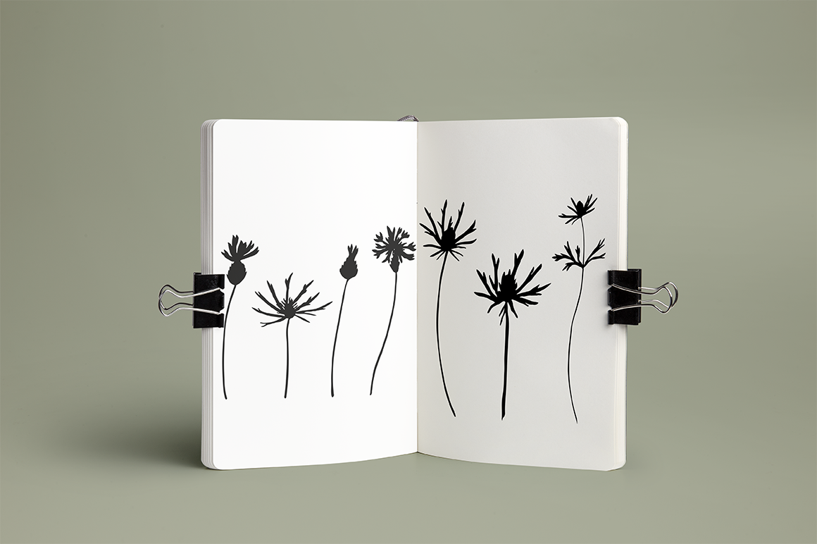 Meadow flowers , plants and grasses.  example image 2