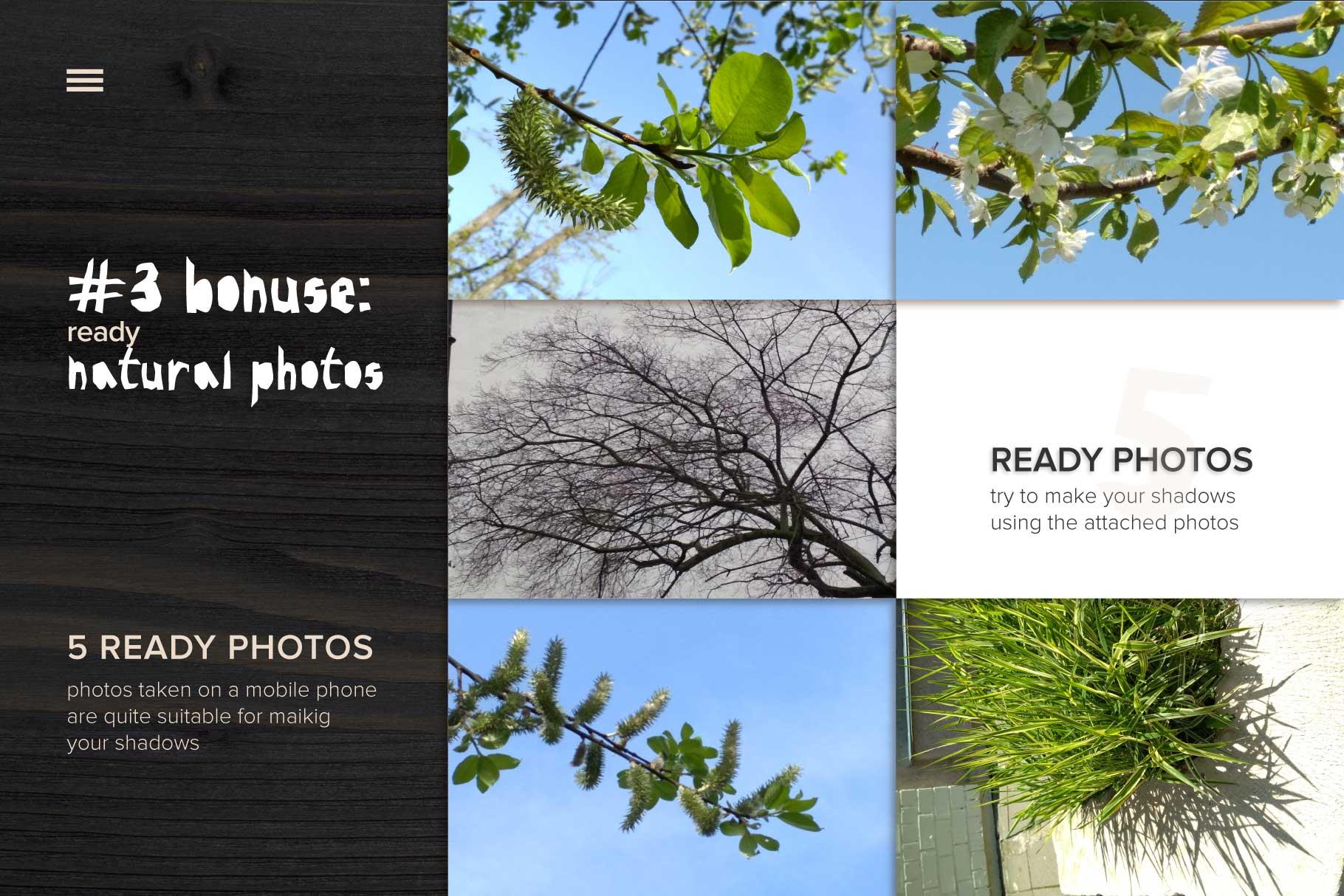 MockUp Natural Plant Shadow creator example image 6