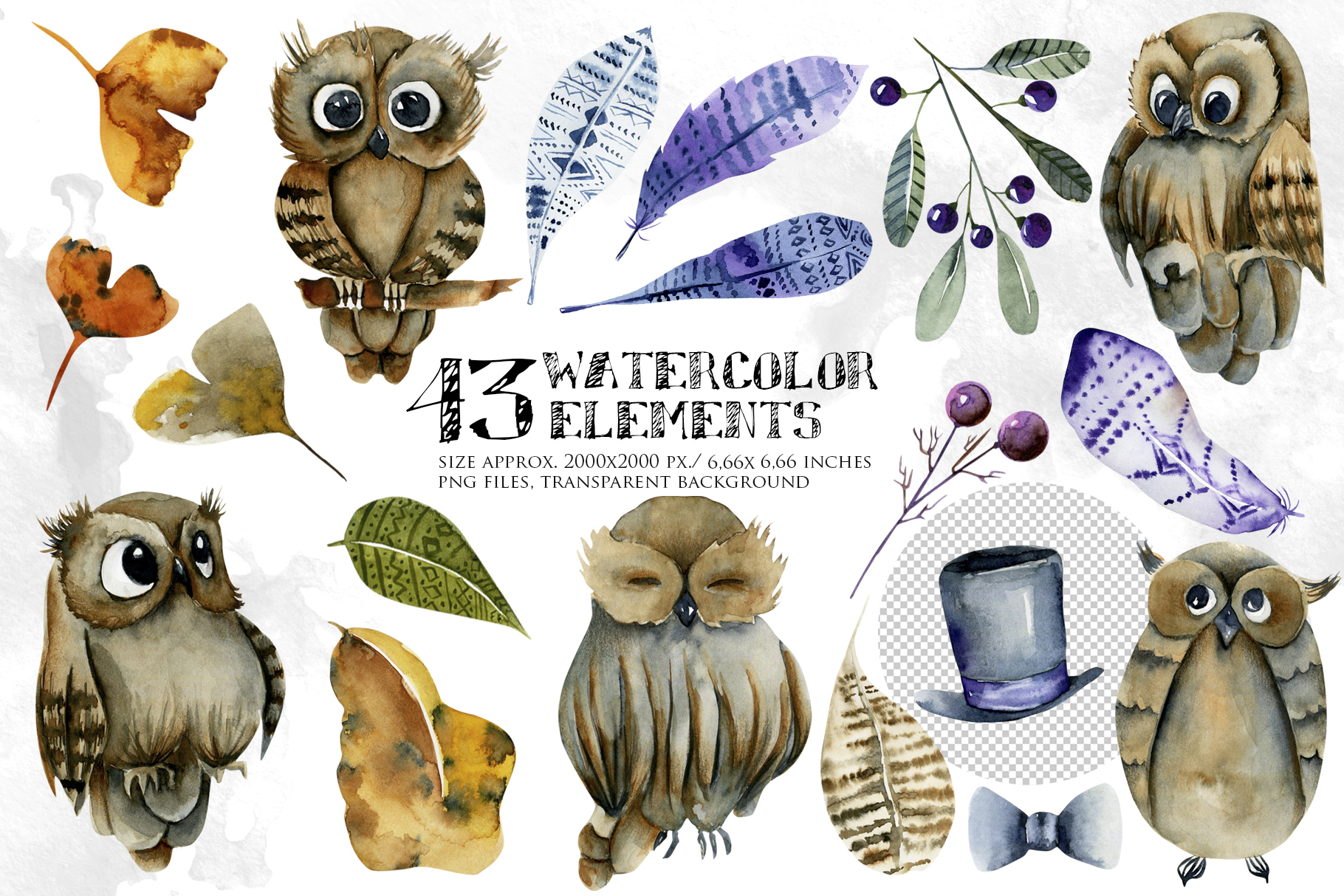 Foxes & Owls. Watercolor clipart. example image 3