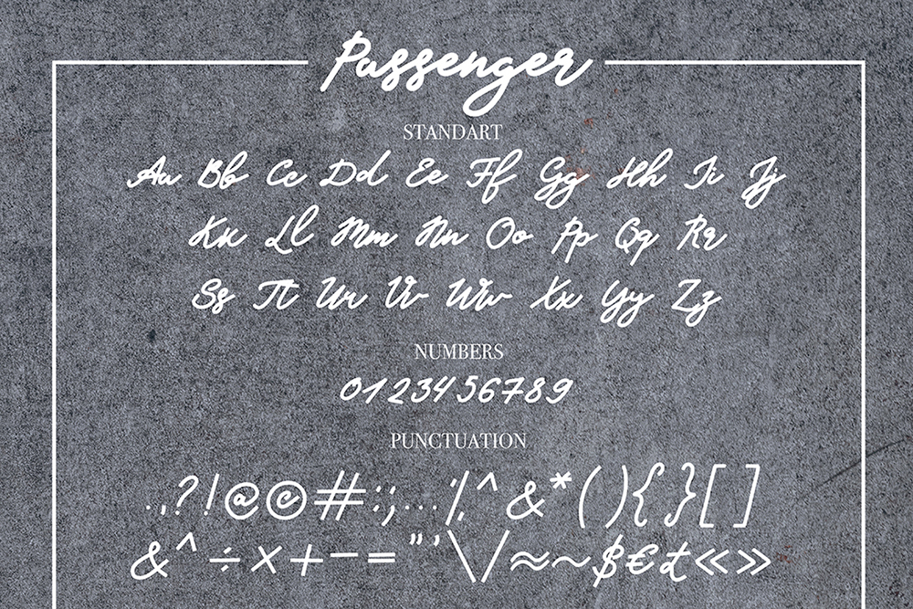 Passanger example image 7
