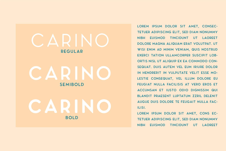 Carino - A Modern Elegant Typeface example image 10