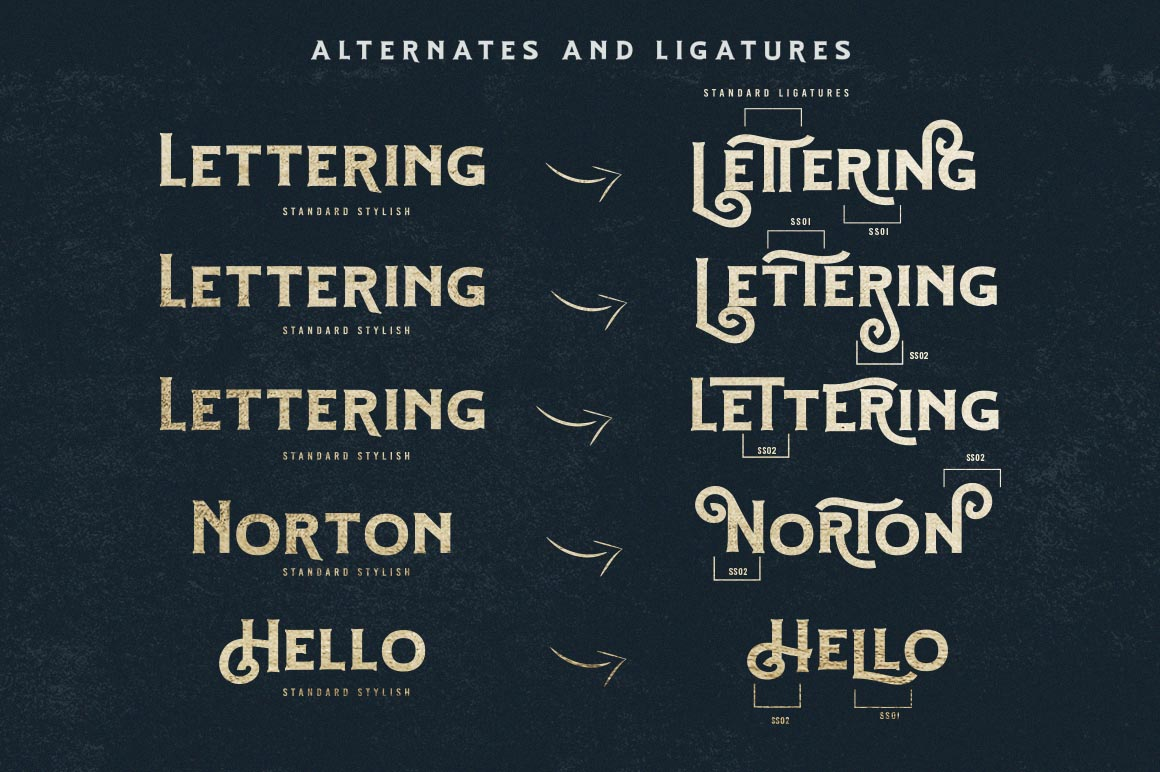 Hartons Vintage Typeface and Extras example image 10