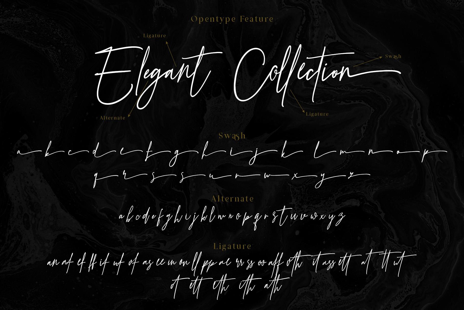 Prestige Signature - Serif & Script example image 5