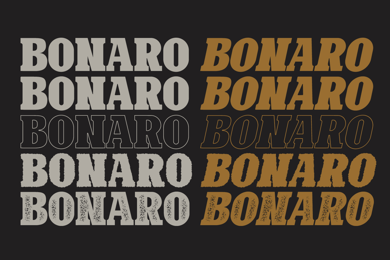 10 Font - Bonaro Font Family example image 5