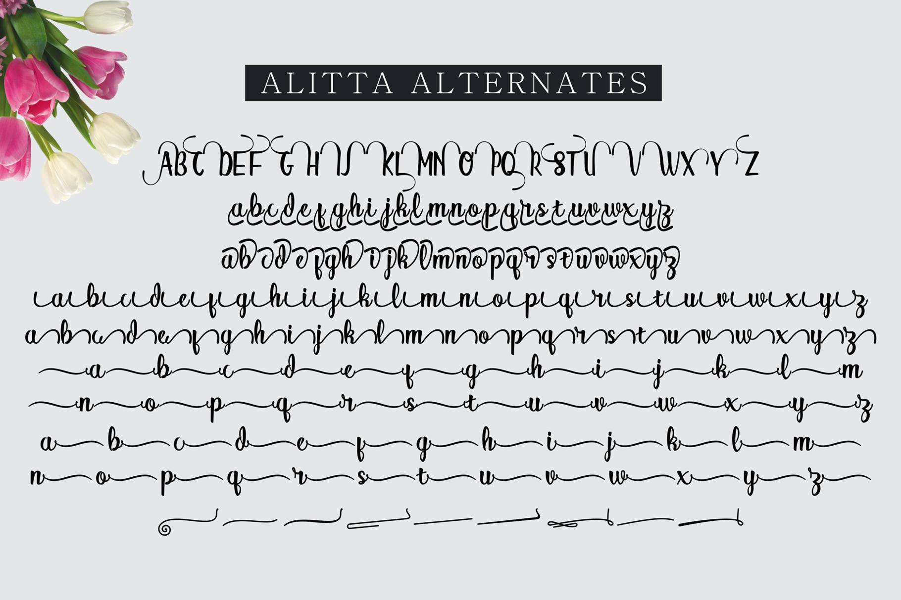 Alitta example image 13